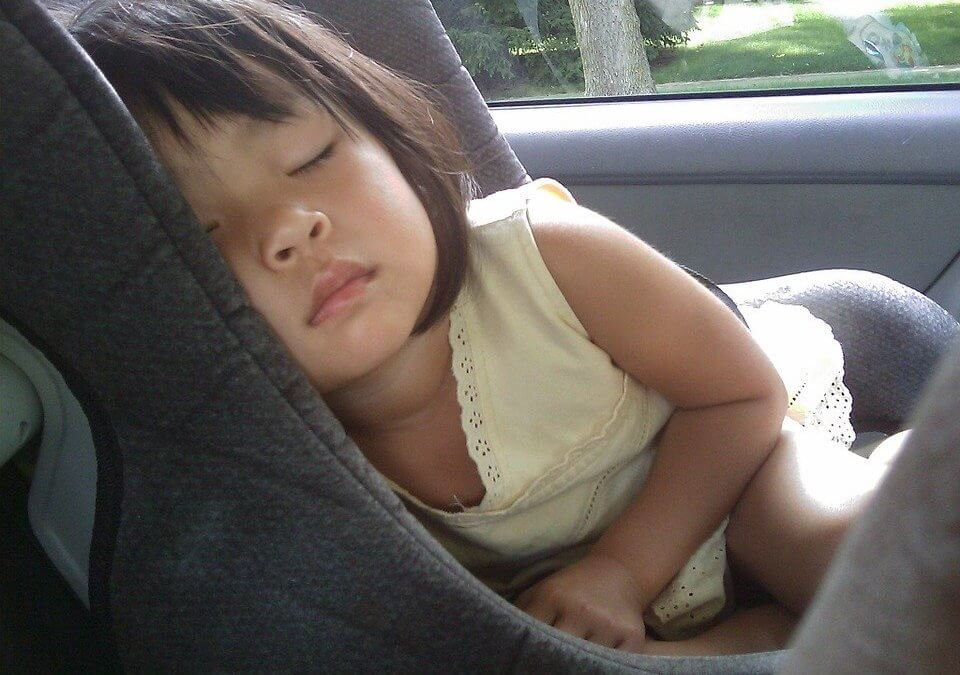 Children and Pets should not Stay in Hot Cars